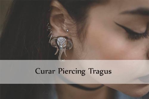 curar piercing tragus