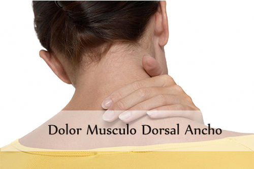 dolor musculo dorsal ancho